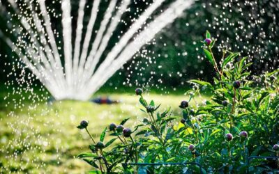 Impianti Di Irrigazioni Roma